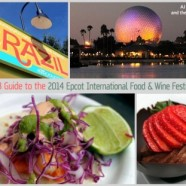 News! Launch of the 'DFB Guide to the 2014 Epcot Food and Wine Festival' e-book